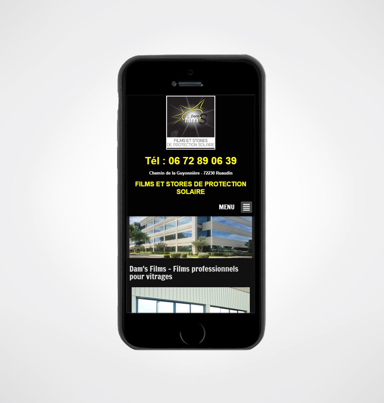cr ation site internet dam film 39 s poseur de film sur le mans. Black Bedroom Furniture Sets. Home Design Ideas